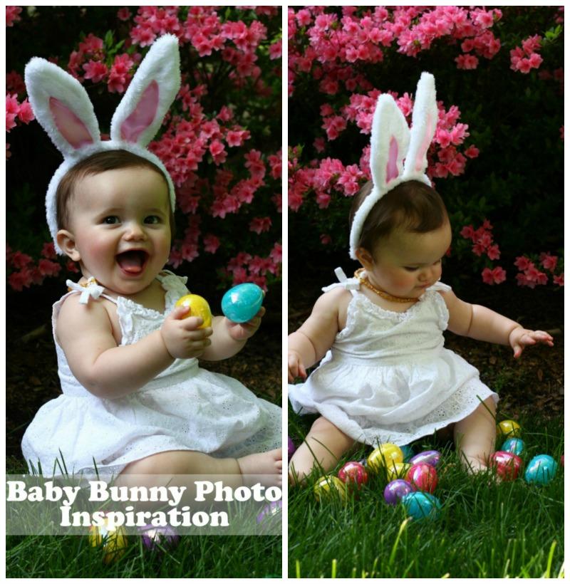 bunnyphoto