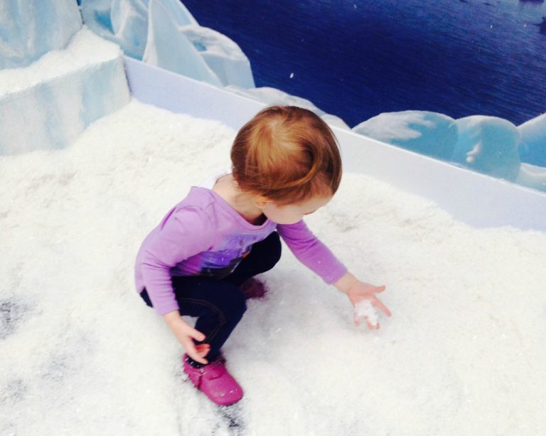 Santa's Frozen Ice Palace