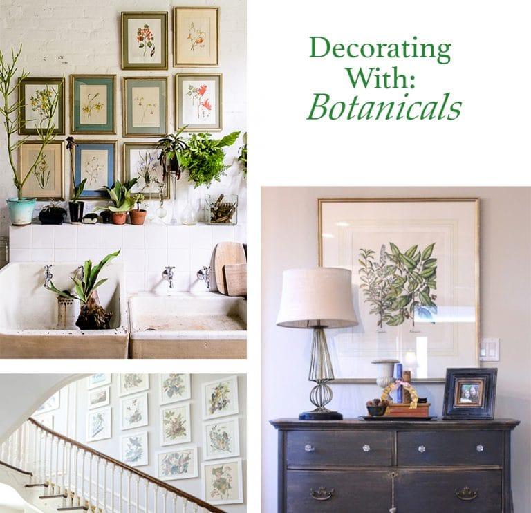 Decorating With Botanicals