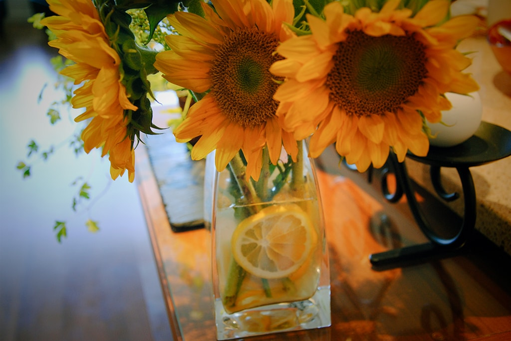 Sunflowers with Lemon
