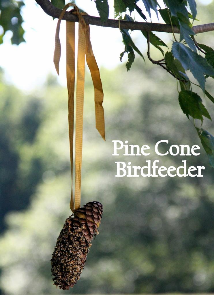 Pine Cone Birdfeeder