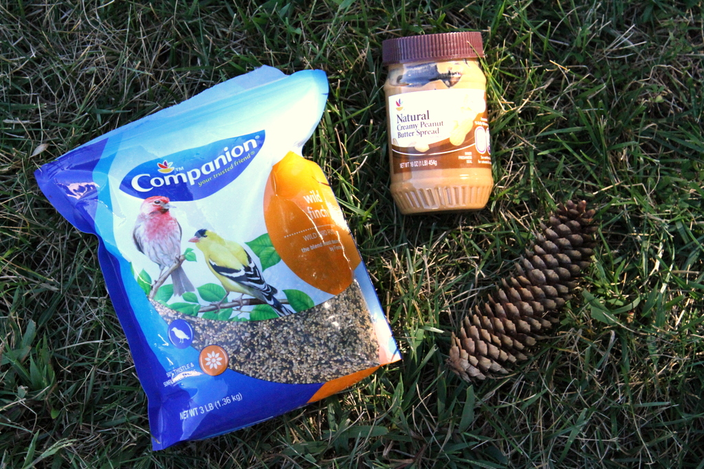 Birdfeeder Supplies