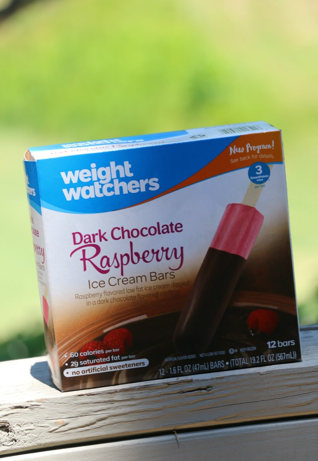 dark chocolate rasbperry bars