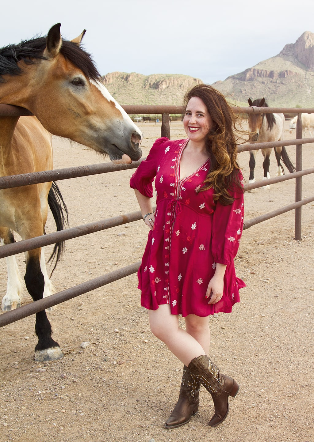 Red Dress Horse 2