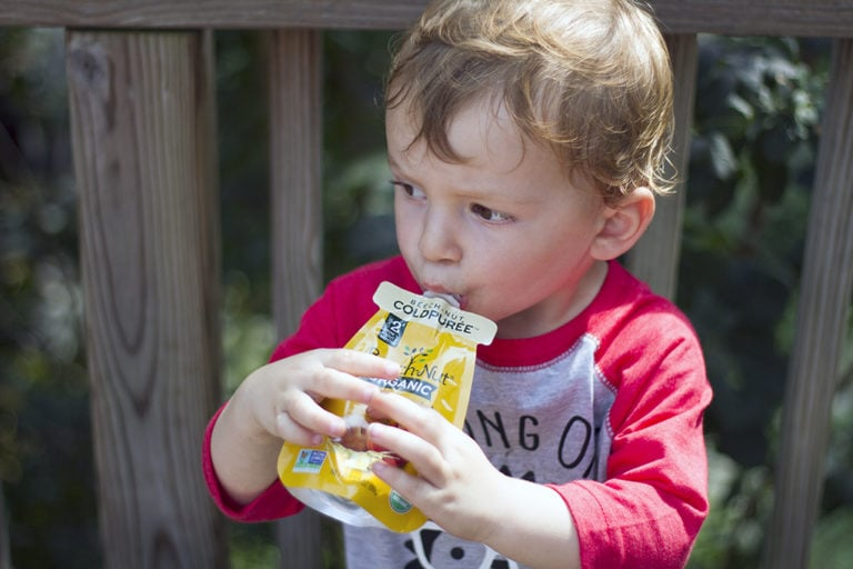 Healthy Food Options for Kids On-the-Go