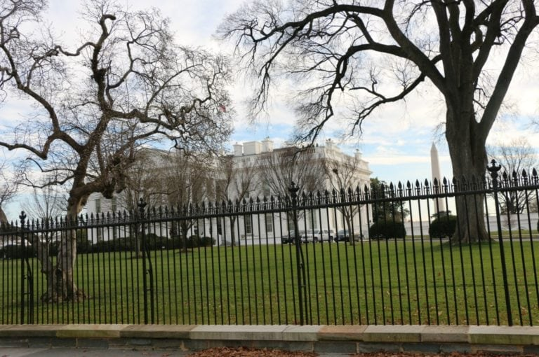 What to Do in Washington D.C. with Kids