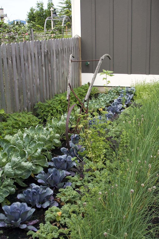 Chef Garden Rows