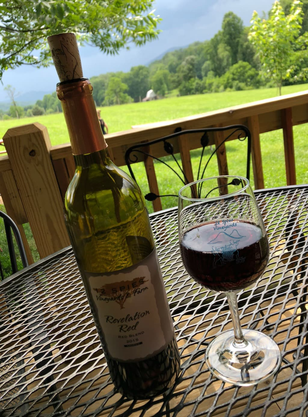 north georgia wine