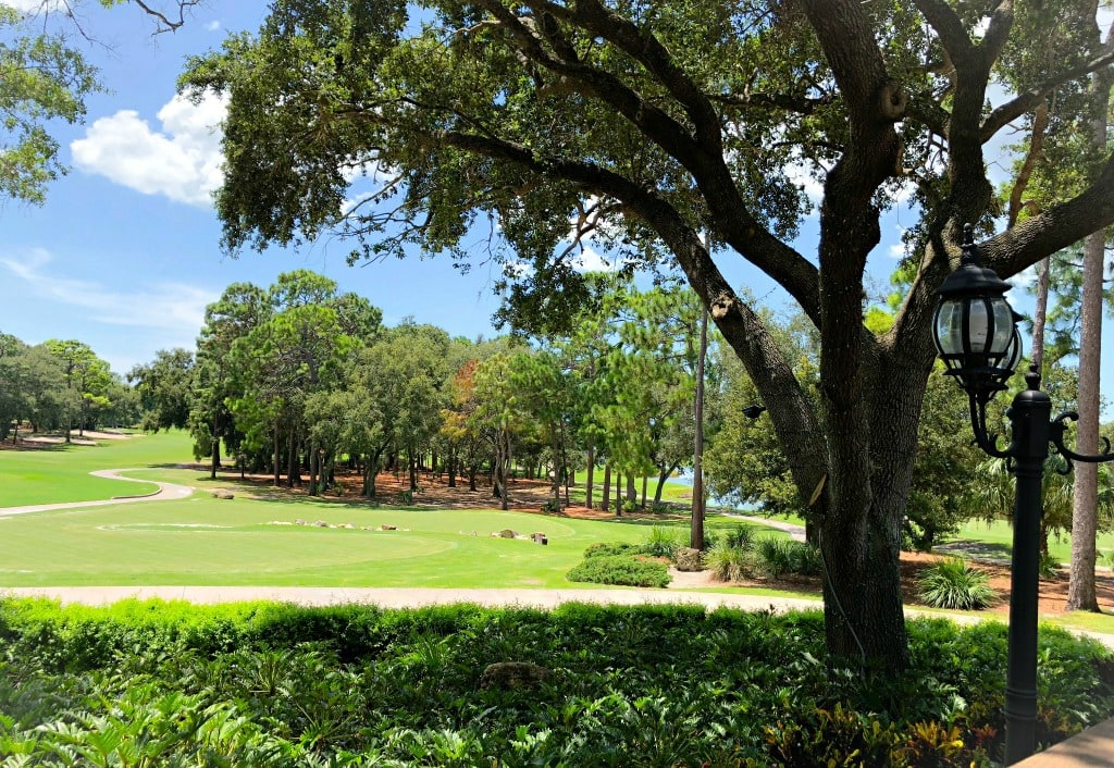 the view from the Market Salamander Grille at Innisbrook Resort