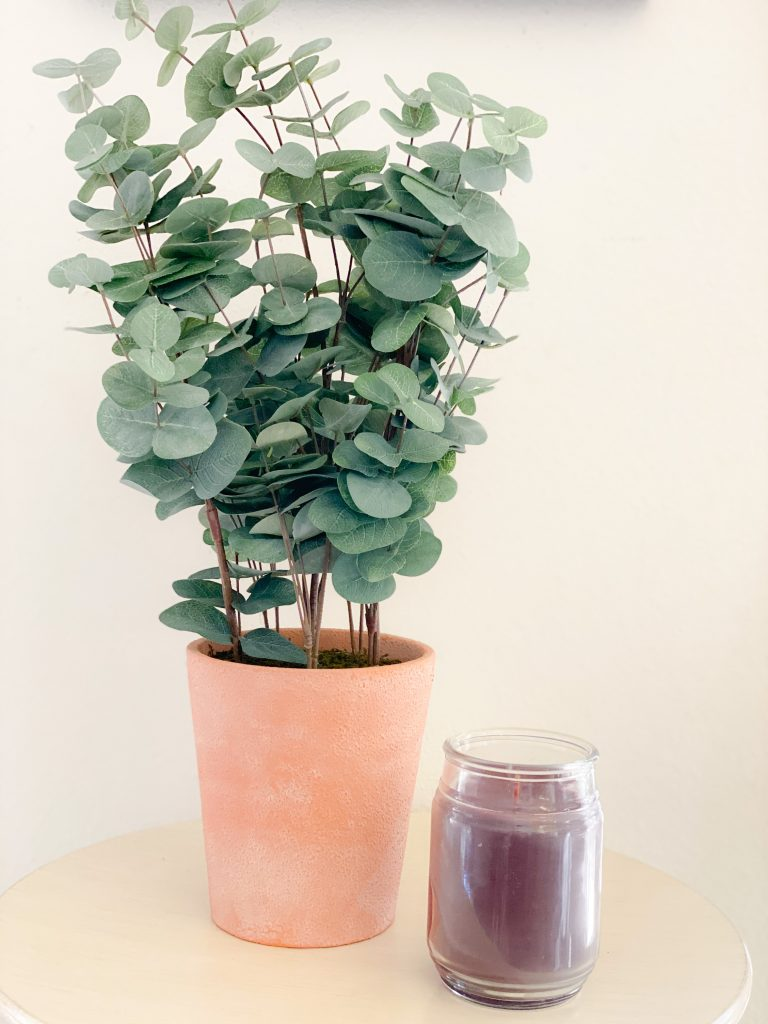 faux eucalyptus plant in terracotta pot