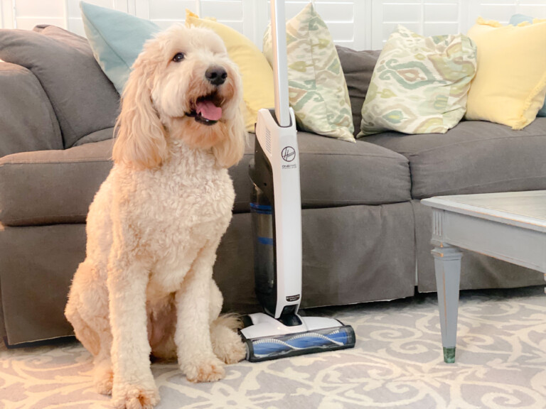 The Easy Way to Clean Up After Pets and Kids