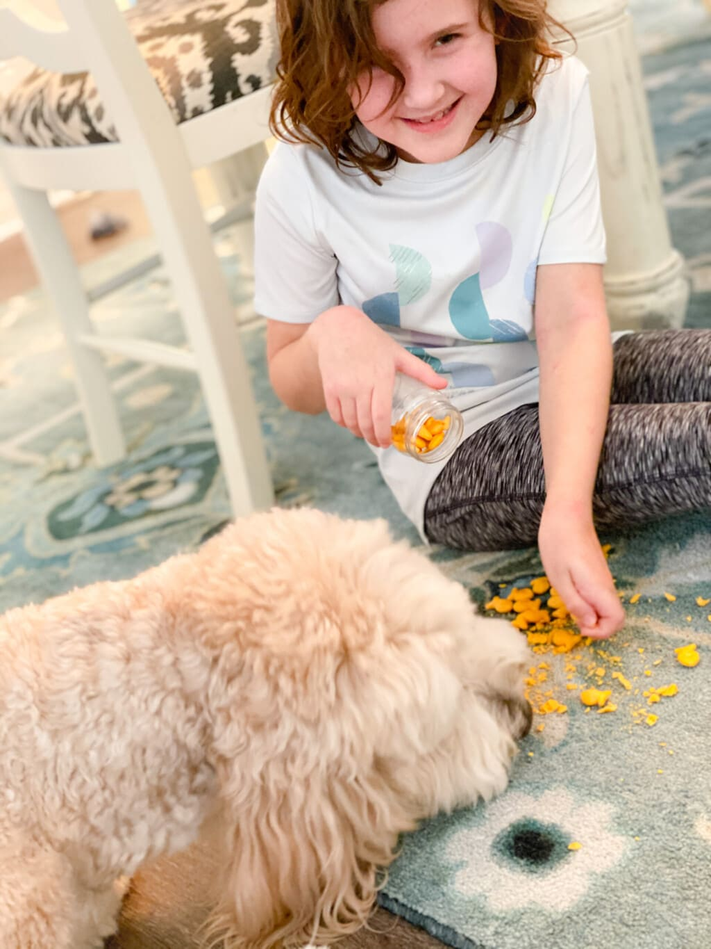little girl dumping out goldfish crackers and white dog eating them