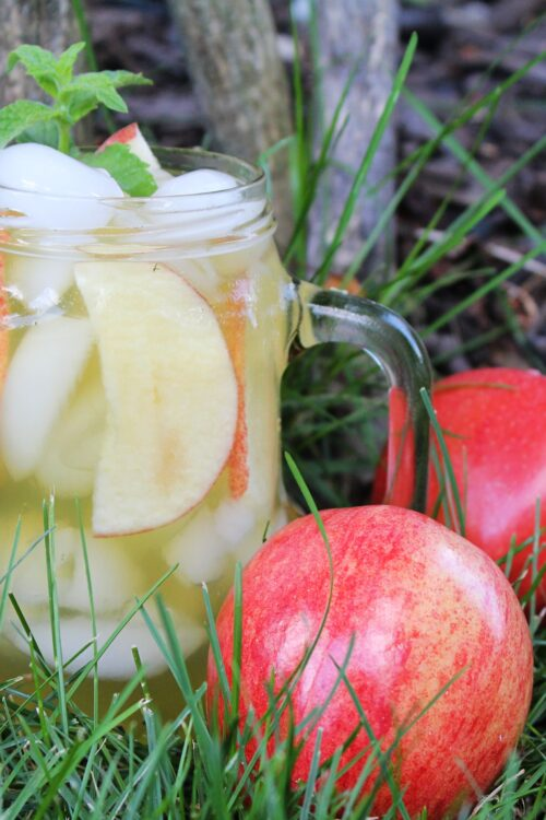 Easy Apple Cider Mojito Recipe