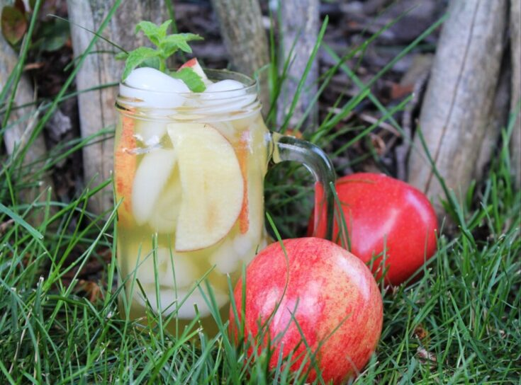 clear mug filled with ice, mojito and apple slices sitting on grass next to red apples